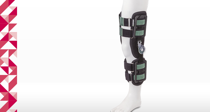 ERH 43 Open modular knee apparatus