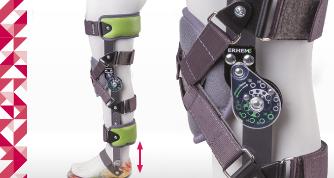 ERH 67 Splint-strap lower limb apparatus with sandal, KAFO Neuro series/ przegub kolana 1R/15, foot Basic